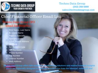 Chief Financial Officer Email & Mailing List.pdf