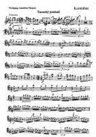Mozart - Marcha turca para contrabaixo e piano (arr. Gajdos).pdf