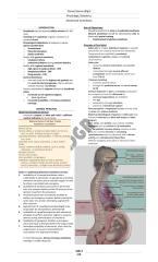 Obstetric Anesthesia.pdf